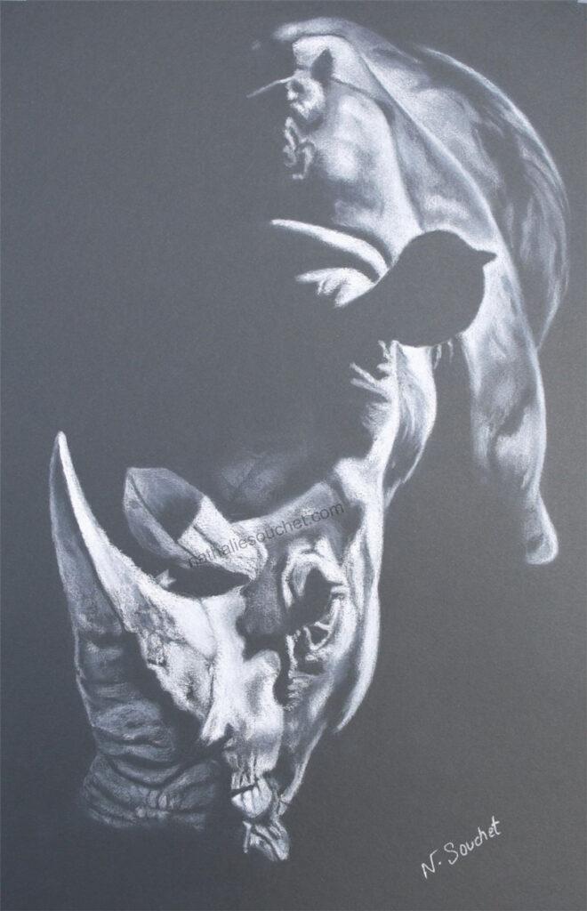 Rhino blanc